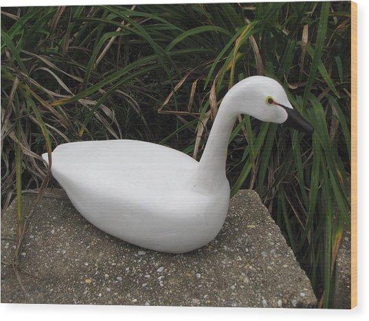 Swan-derful Wood Print