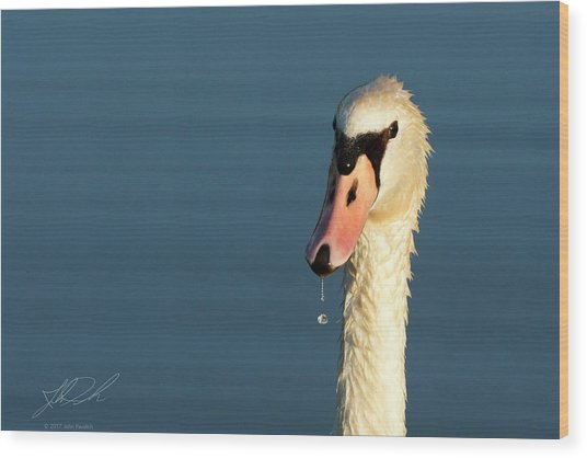 Swan Drop Wood Print