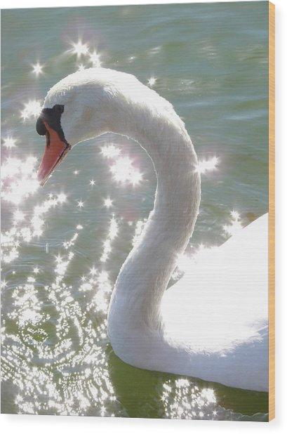 Swan II Wood Print