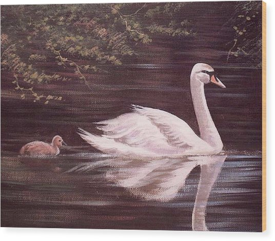 Swan Lake Wood Print by Cathal O malley