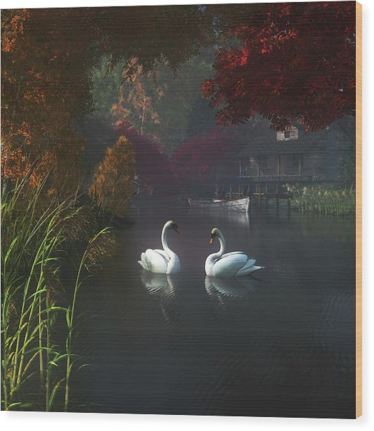 Swans In A River Near Home Wood Print