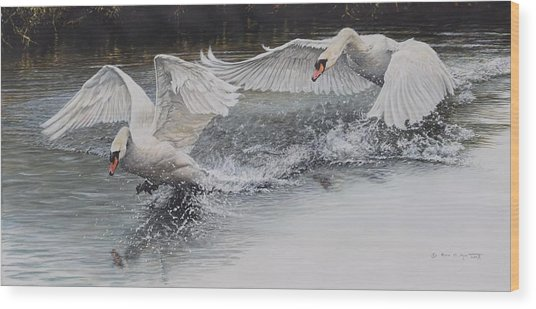 Wood Print featuring the painting Swans In Dispute by Alan M Hunt