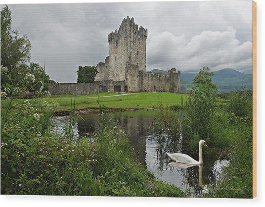 Swan's Lake Wood Print