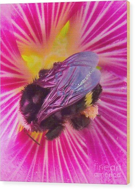Sweet Bee Wood Print by JoAnn SkyWatcher