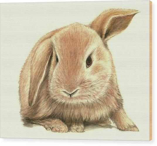 Sweet Bunny Wood Print