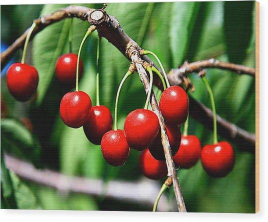 Sweet Cherry Pie Wood Print by Robert Pearson