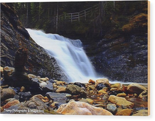 Sweet Creek Falls , Wa Wood Print