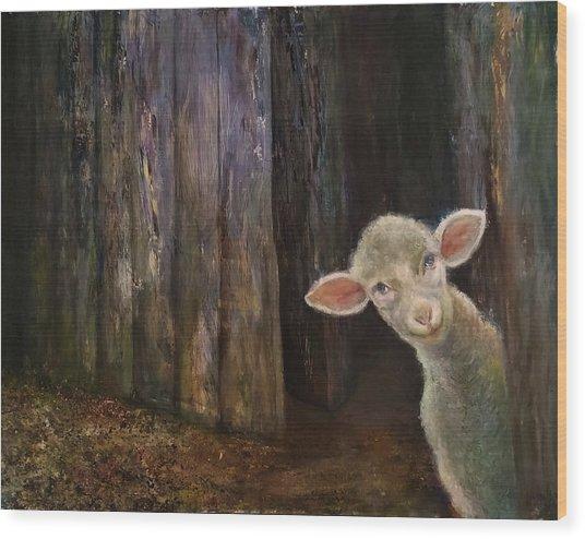 Sweet Lamb Wood Print