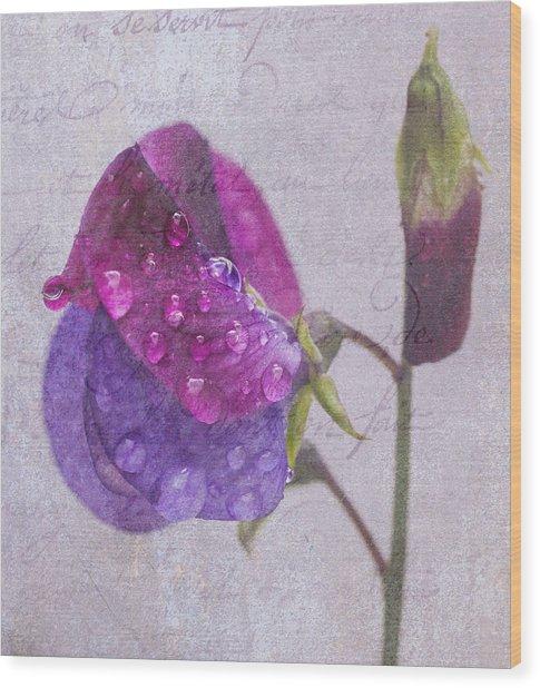 Sweet Pea Raindrops Wood Print