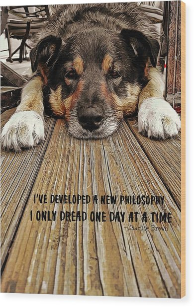 A Dogs Life Quote Wood Print by JAMART Photography