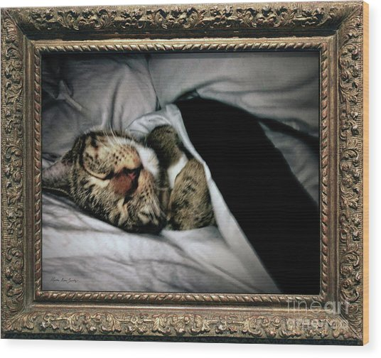 Wood Print featuring the photograph Sweet Simba Photo A8117 by Mas Art Studio