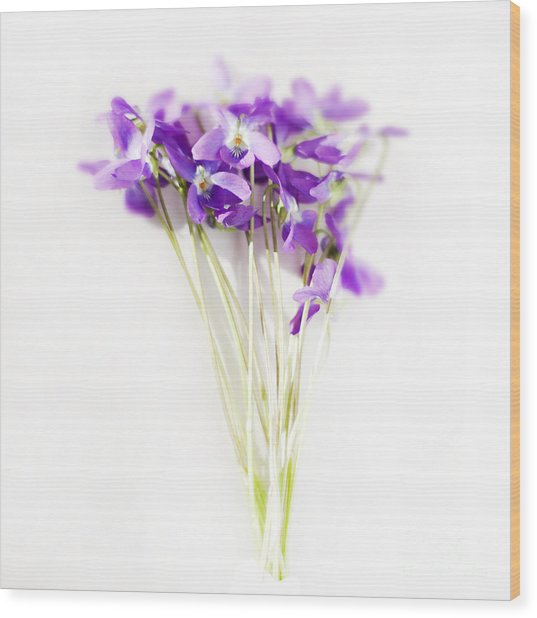 Sweet Violets Wood Print