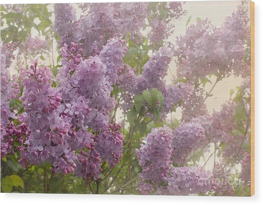 Swimming In A Sea Of Lilacs Wood Print