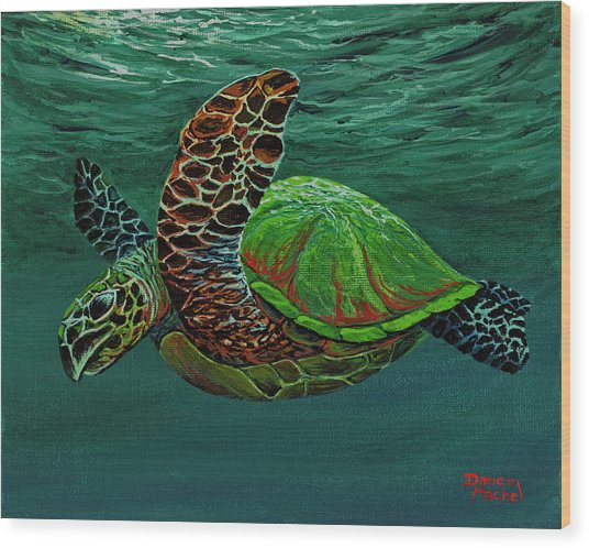 Wood Print featuring the painting Swimming With Aloha by Darice Machel McGuire