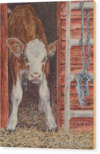 Swiss Calf, Got Milk? Wood Print