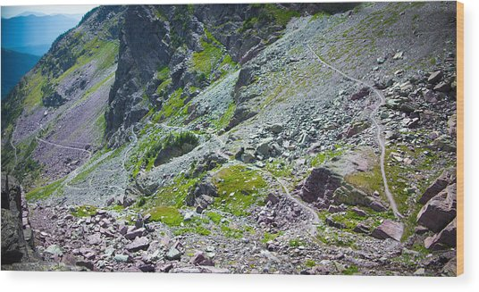 Switchbacks Below Comeau Pass Wood Print