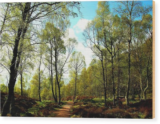 Swivel Wood Print