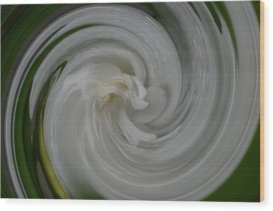 Swrling Rose Wood Print