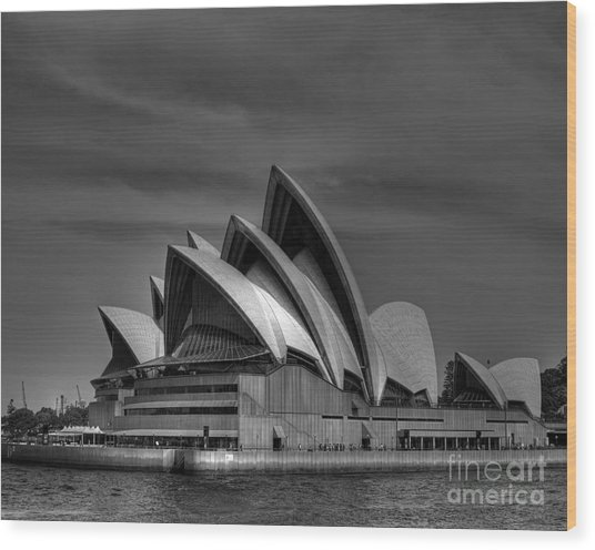 Sydney Opera House Print Image In Black And White Wood Print by Chris Smith
