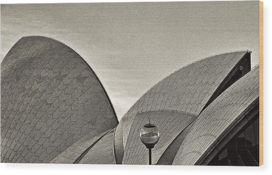 Sydney Opera House Roof Detail Wood Print