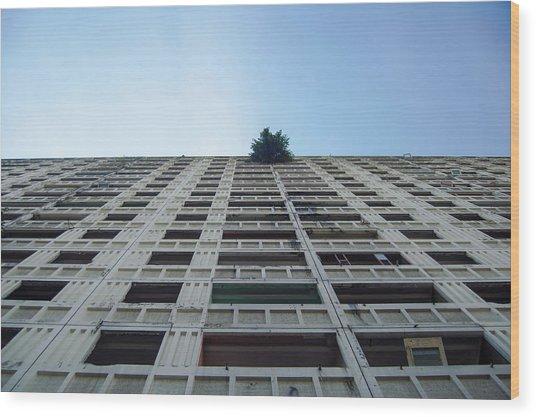 Symmetrical Block Wood Print