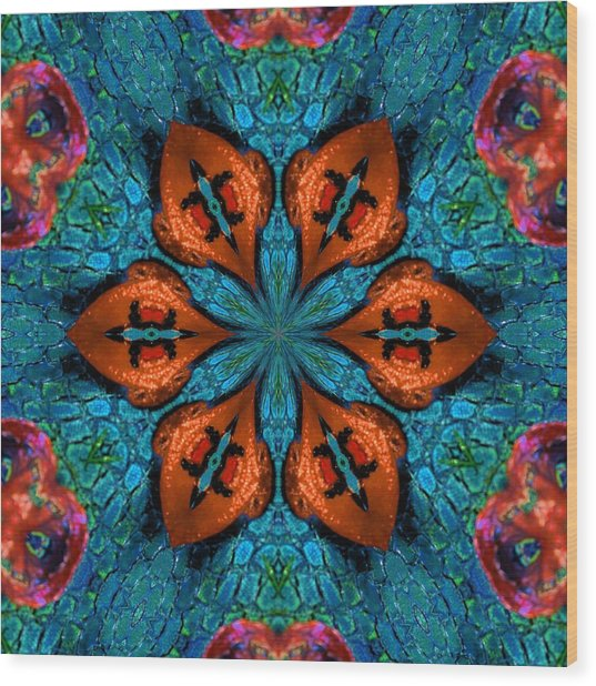 Synchronized Swimmers Wood Print