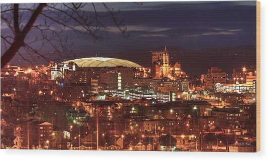 Syracuse Dome At Night Wood Print