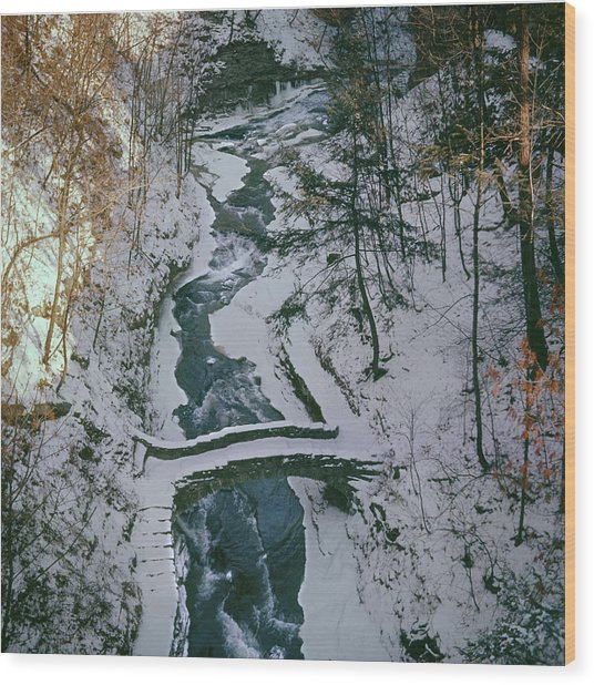T-31501 Gorge On Cornell University Campus Wood Print