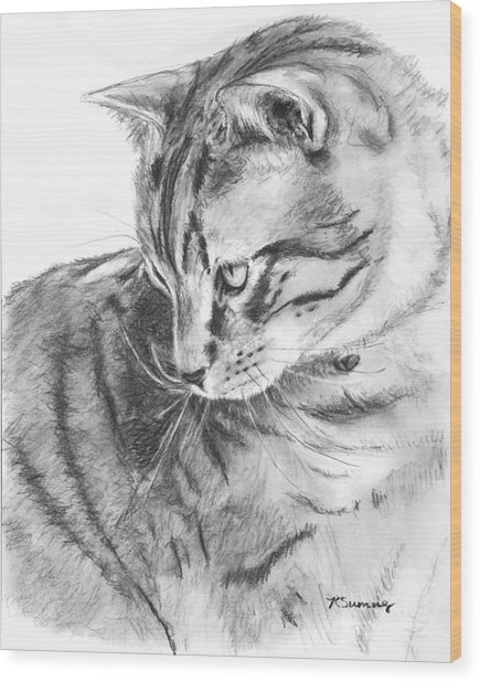 Tabby Cat In Profile Drawing Wood Print