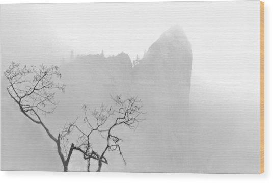 Taft Point In Mist Wood Print