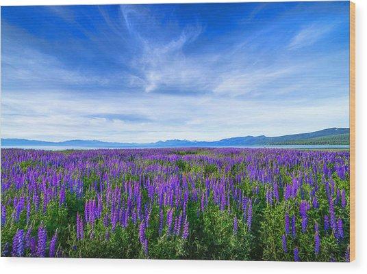 Tahoe Lupines Wood Print
