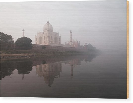 Taj Mahal, India Wood Print