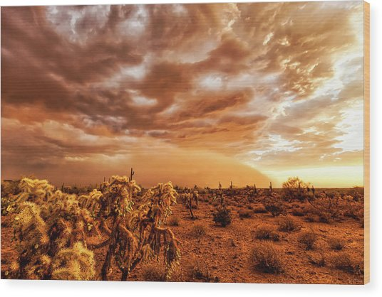 Wood Print featuring the photograph Take Cover by Rick Furmanek