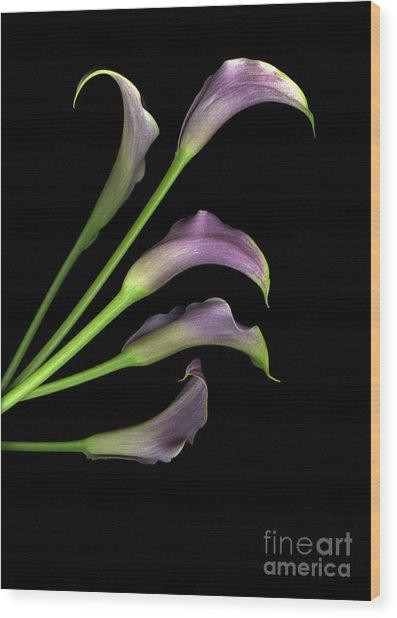 Take Five  Wood Print by Christian Slanec