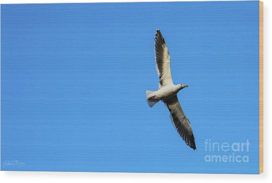 Take Flight Wood Print