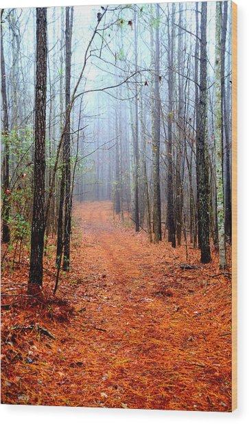 Taking A Stroll Wood Print