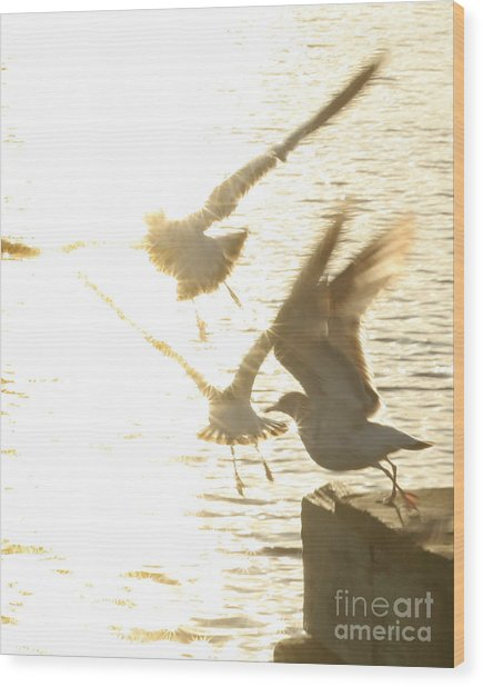 Taking Flight Wood Print by Angie Bechanan