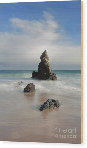 Tall And Proud On Sango Bay Wood Print