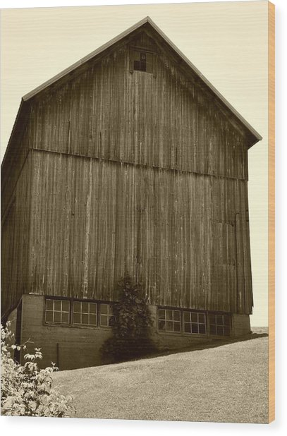 Tall Barn On Hillside Wood Print