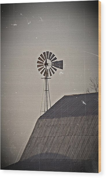 Taller Than You- Fine Art Photography Wood Print