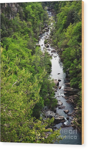 Tallulah Gorge-65 Wood Print