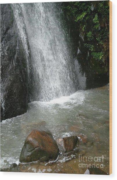 Tam Dao Falls  Wood Print