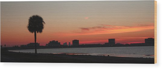 Tampa Bay Sunrise Wood Print by Janet Pugh