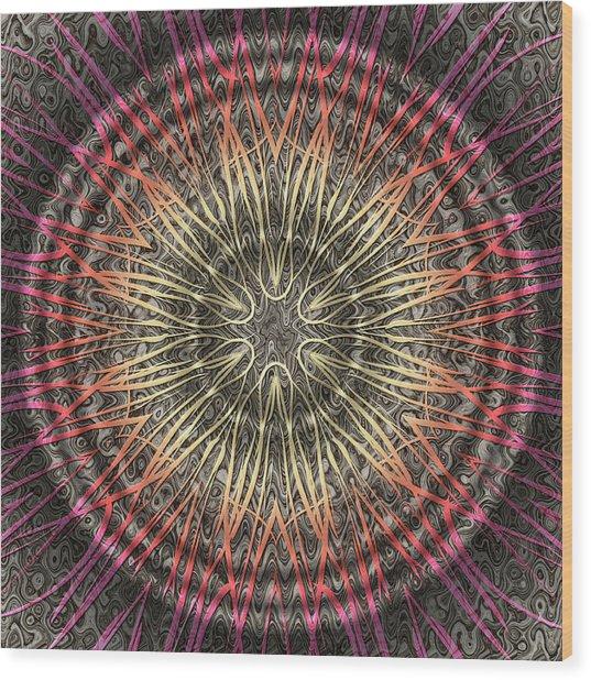 Tangendental Meditation Wood Print