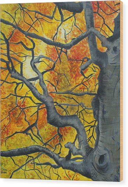 Tangled Wood Print