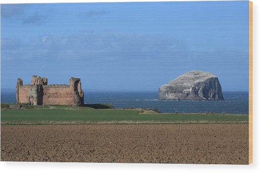 Tantallon Castle And The Bass Rock Wood Print by Maria Gaellman