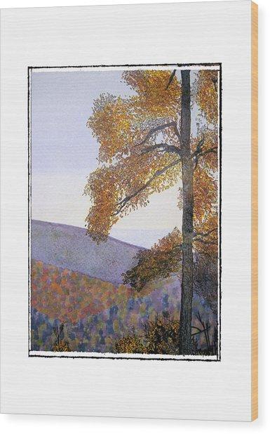 Tapestree Wood Print by Robert Boyette