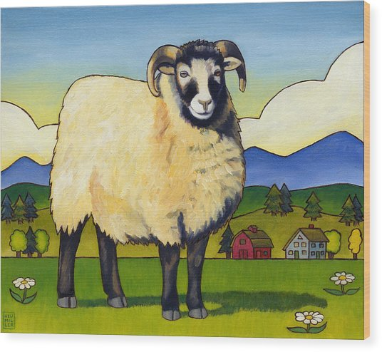 Taras Sheep Wood Print