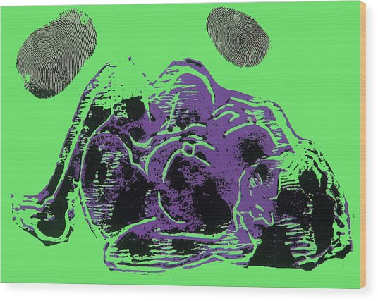 Tarbaby 3 Wood Print by Adam Kissel