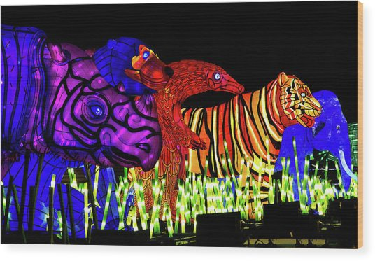 Taronga For The Wild 1 Wood Print